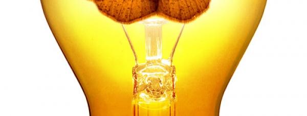 Лампочки-нелампочки